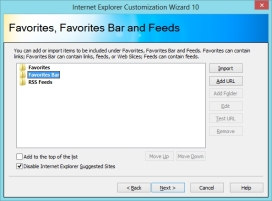 22-17-22-Internet Explorer Customization Wizard 10