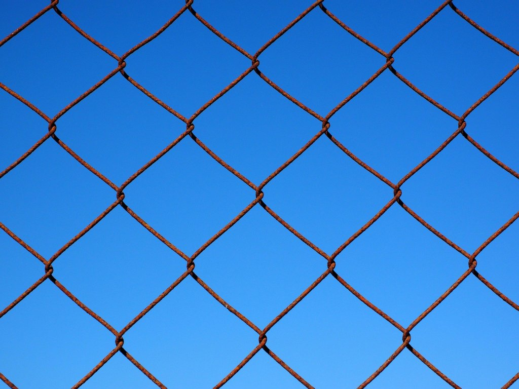 Source: https://pixabay.com/photos/wire-mesh-wire-mesh-fence-fence-1117741/